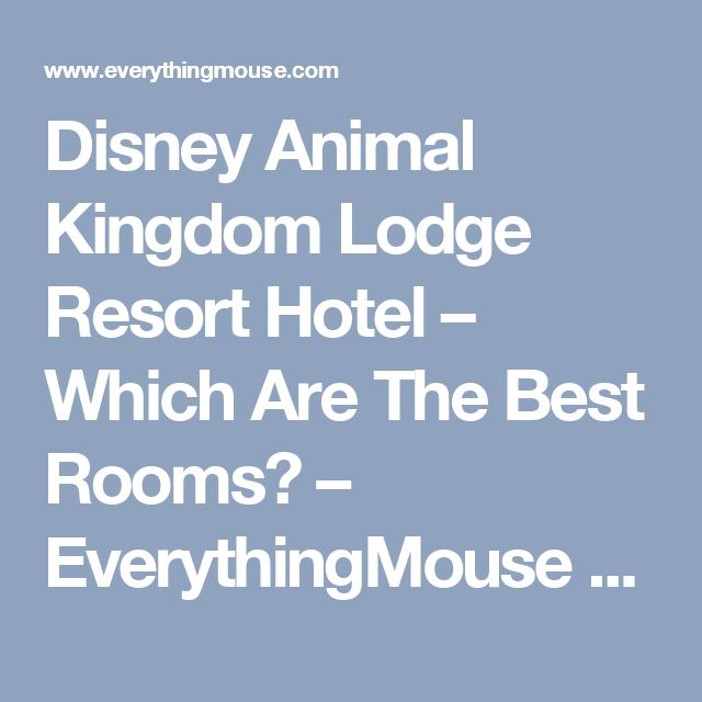 Disney Animal Kingdom Lodge Resort Hotel – Which Are The Best Rooms? – EverythingMouse Guide To Disney
