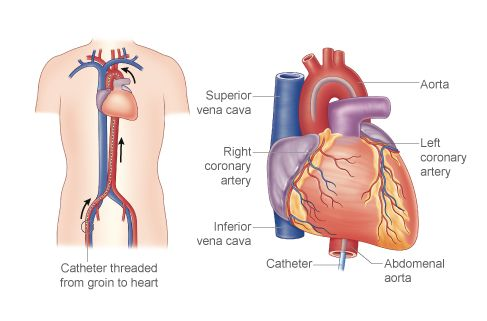 If you find the best and Top Cardiologist in Kolkata, you have to consider the name Sankha Subhra Das, the most experienced Cardiologist in Kolkata.