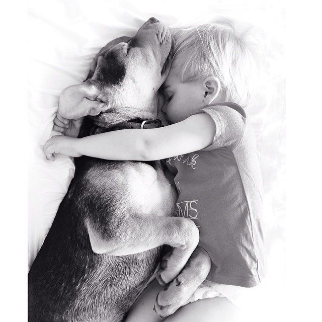 Best THEO BEAU Images On Pinterest Doggies Bedtime And Mad - Toddler naps with puppy