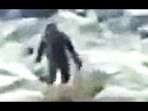 Yeti Footage from the Tatra Mountains, Poland - Recently there has been reports of Yeti sightings in the Tatra Mountains of Poland. This is one of two new new pieces of video footage to have now surfaced that appear to show an ape-like creature roaming the Polish wilderness.