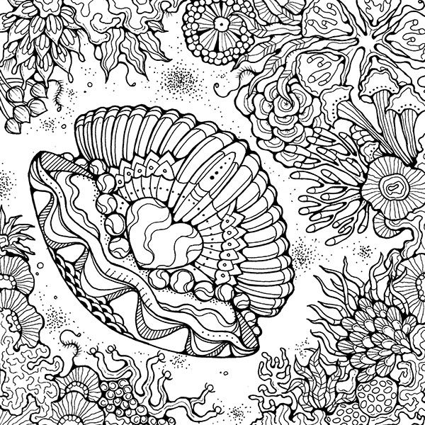332 best Coloring - Seashells & Sea life images on Pinterest ...