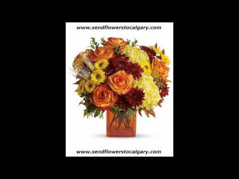 calgary flowers for delivery https://calgaryflowersdelivery.com