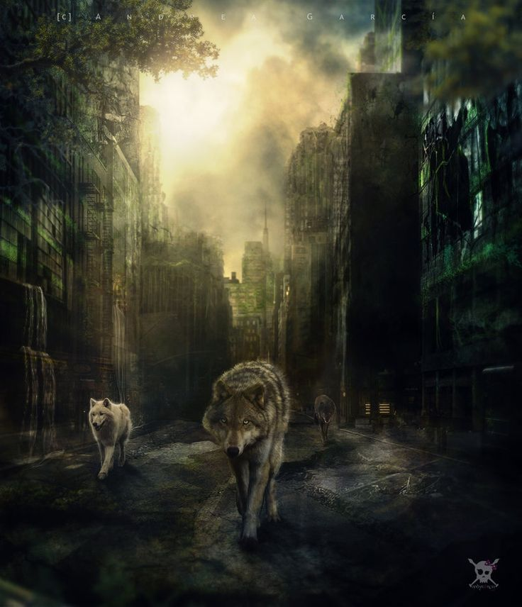 City of Wolves by© AndyGarcia666  (http://andyg4cia.com) (www.facbook.com/andygarcia666)