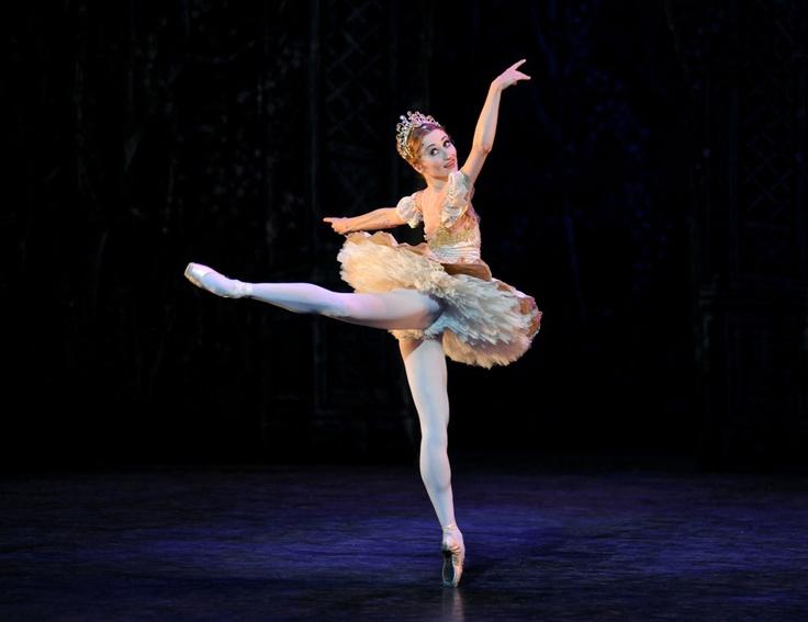 Ballerina / Bailarina / Балерина / Dancer / Ballet / Dance: Ballet En, En Points, Ballerinas Life, Female Dancers, Inspiration Photo, One, Ballet Dance, Dance Inspiration, Four