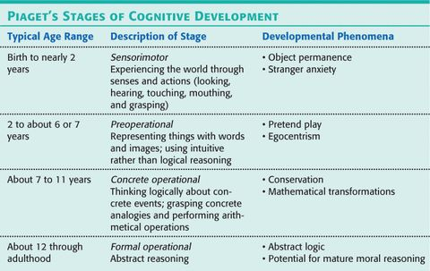 Jean piaget middle adulthood cognitive development Homework Service - piaget's theory