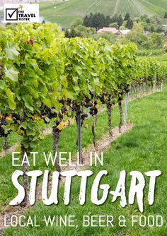 Food in Stuttgart Germany: Swabian Wine and Good Food - The Travel Tester