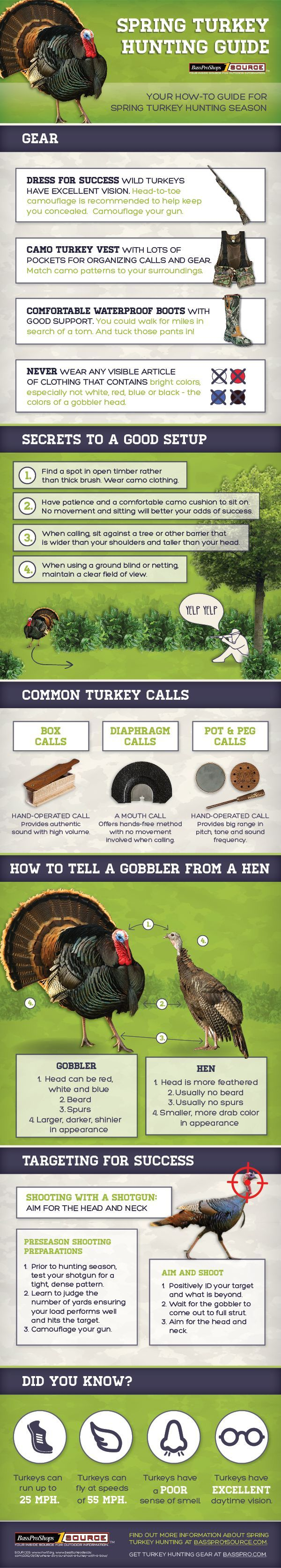 a how to guide to spring turkey hunting infographic  [ 600 x 3350 Pixel ]