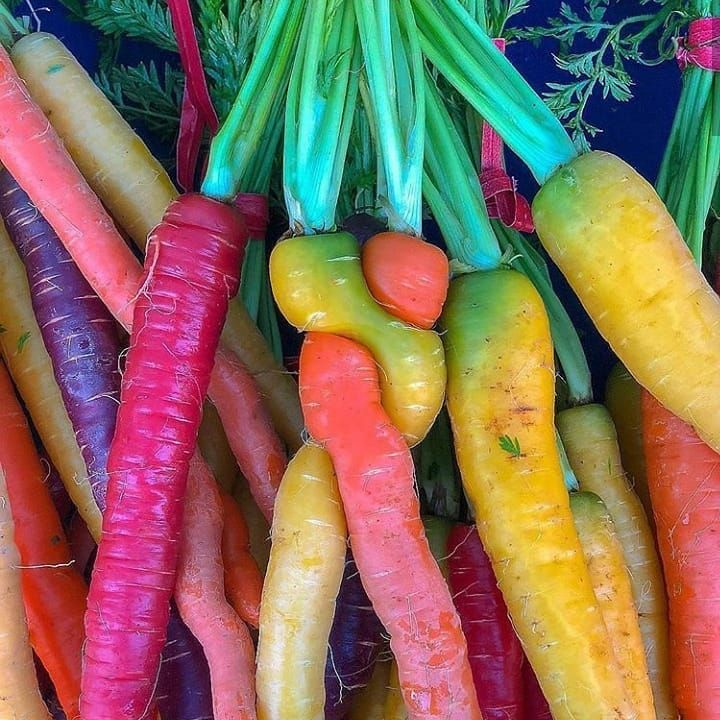 Carrots Are Happier Than Me Carrots Happier Social Instagram Aesthetic Aesthetictumblr Aesthetics Photo Pictur Carrots Rainbow Carrots Vegan Foodie
