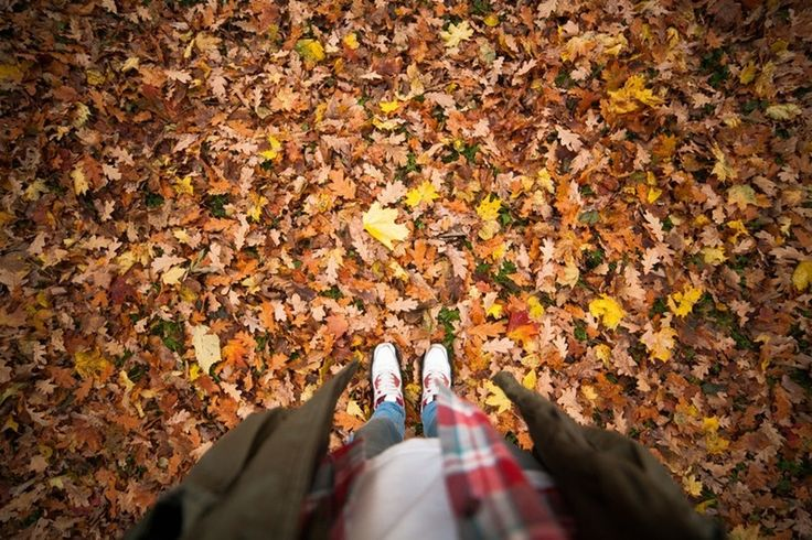 What Does The Autumnal Equinox Mean? In 2016, Find Balance & Prepare For A Rebirth