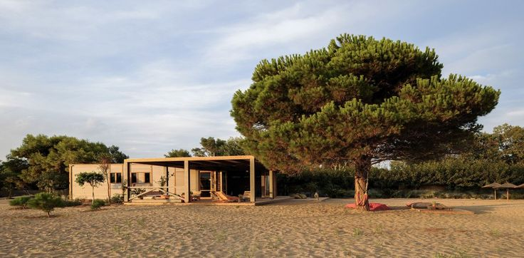 Beach Bar – Restaurant in Schinias. The gentle, sustainable intervention in the particular landscape of Schinias, Attica, is highlighting the sensitivity, eco-friendliness, modesty and finally the maturity of the architectural design.