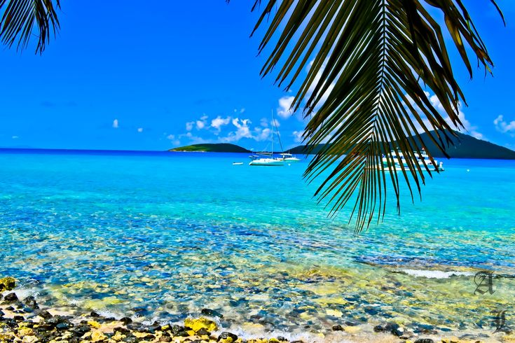 Isla culebra puerto rico places to visit pinterest puerto rico small island and the big - Isla culebra puerto rico ...