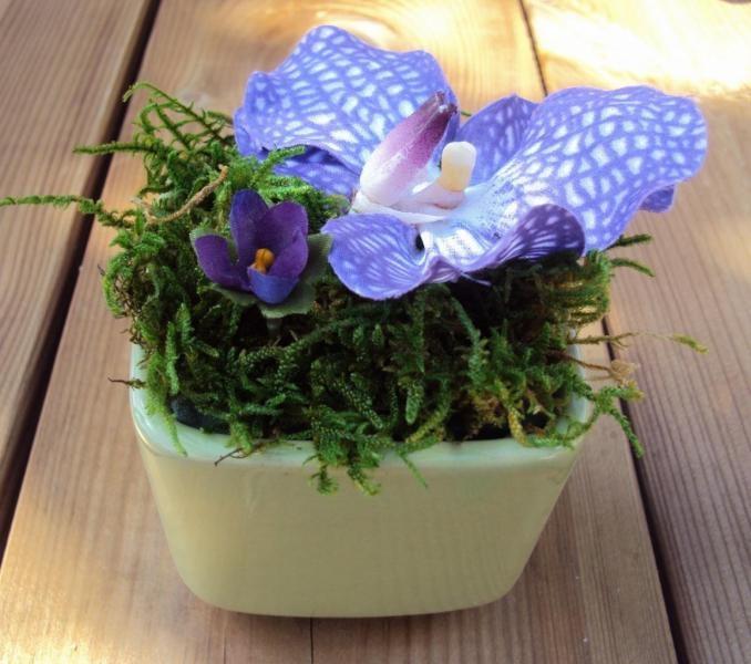 vase cube vert orchidee vanda avec mousse stabilisee. Black Bedroom Furniture Sets. Home Design Ideas