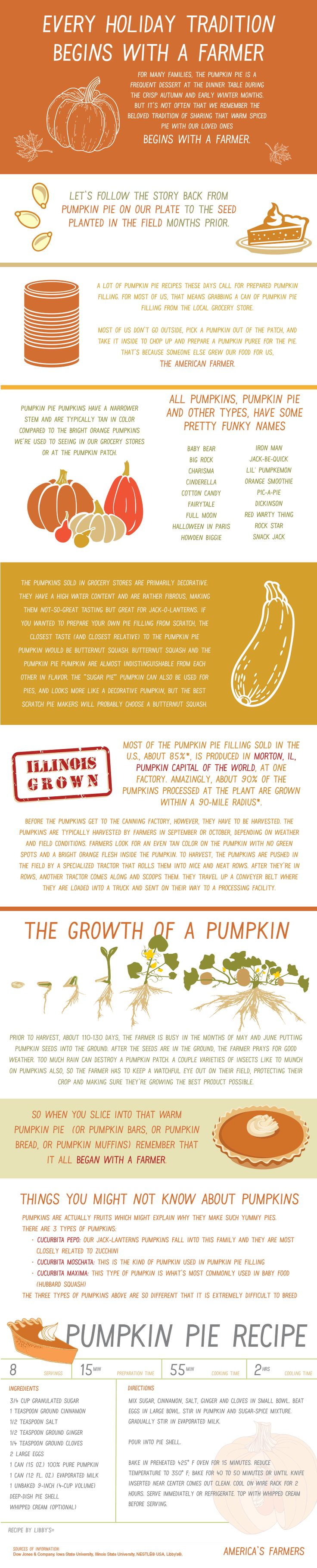 Every Holiday Tradition Begins with a Farmer  Follow the Story of Pumpkin Pie from Seed to Plate
