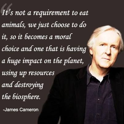 """""""It's not a requirement to eat animals, we just choose to do it, so it becomes a moral choice and one that is having a huge impact on the planet, using up resources and destroying the biosphere."""" - James Cameron"""