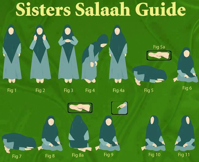 Performance of prayer salat according to sunnah for women. Standing straight with chest towards qible, bend in such a manner that your back looks curved.