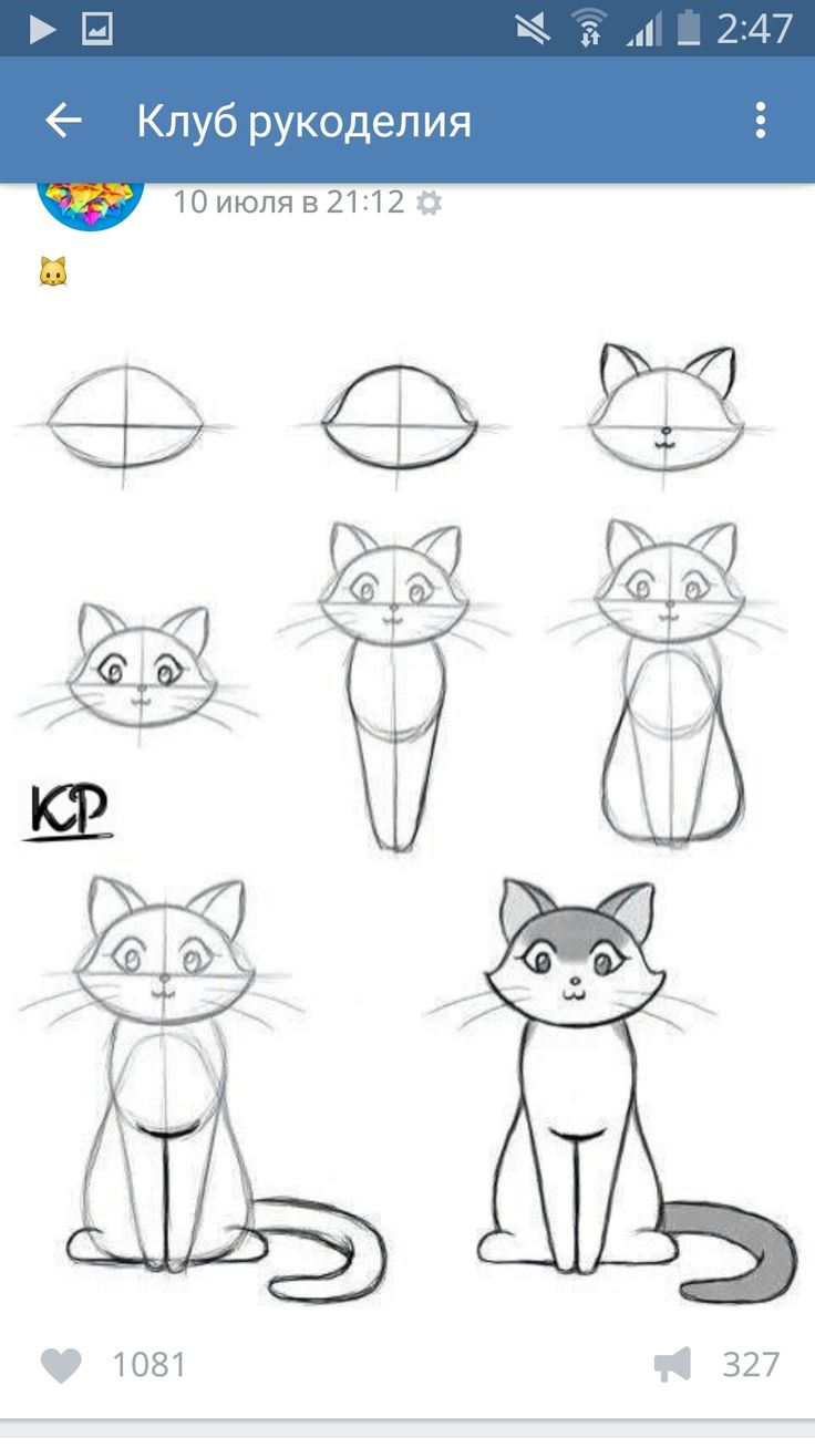best dessin images on pinterest drawing ideas how to draw and