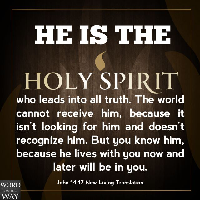 the Spirit of truth, whom the world cannot receive, because it neither sees Him nor knows Him; but you know Him, for He dwells with you and will be in you. [John 14:17]