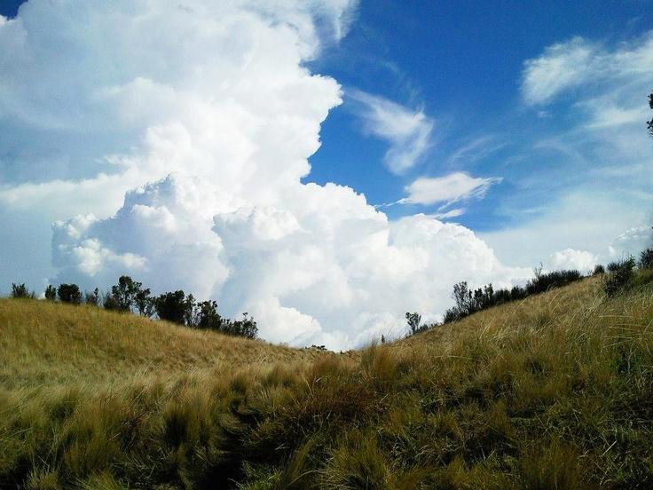 [solo trekking] Merbabu via Selo, 3 - 4 November 2012
