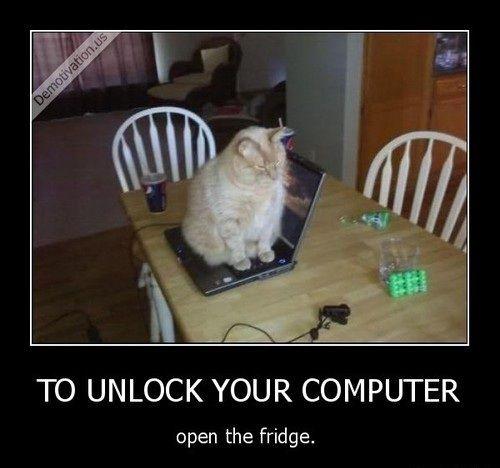 To unlock your computer open the fridge.