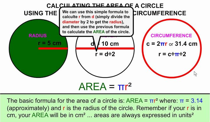 How to Calculate the Area of a Circle from the Radius, Diameter, or Circ...