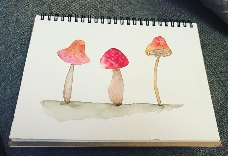 "14 Likes, 2 Comments - Maybloom Studio (@maybloomstudio) on Instagram: ""23/365 Little Shroomies! #365daysofart #paintingoftheday #mushrooms #watercolour #sticktoit…"""