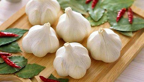 Mire használták a fokhagyma pálinkát a népi gyógyításban?