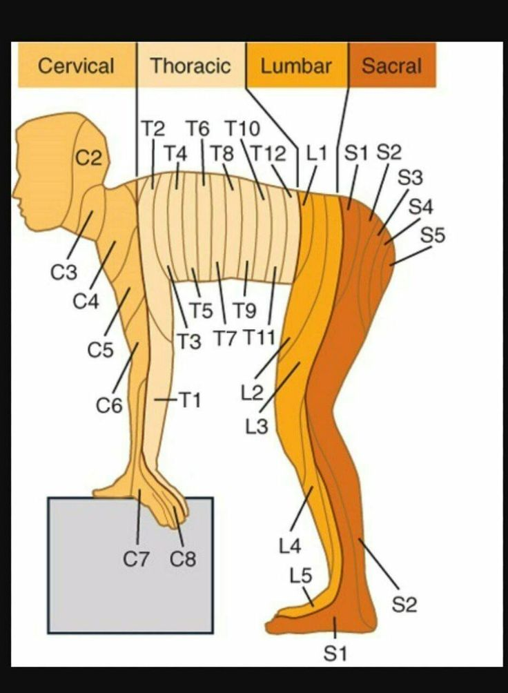 926 best טבע הריפוי images on Pinterest | Physical therapy, Reading ...