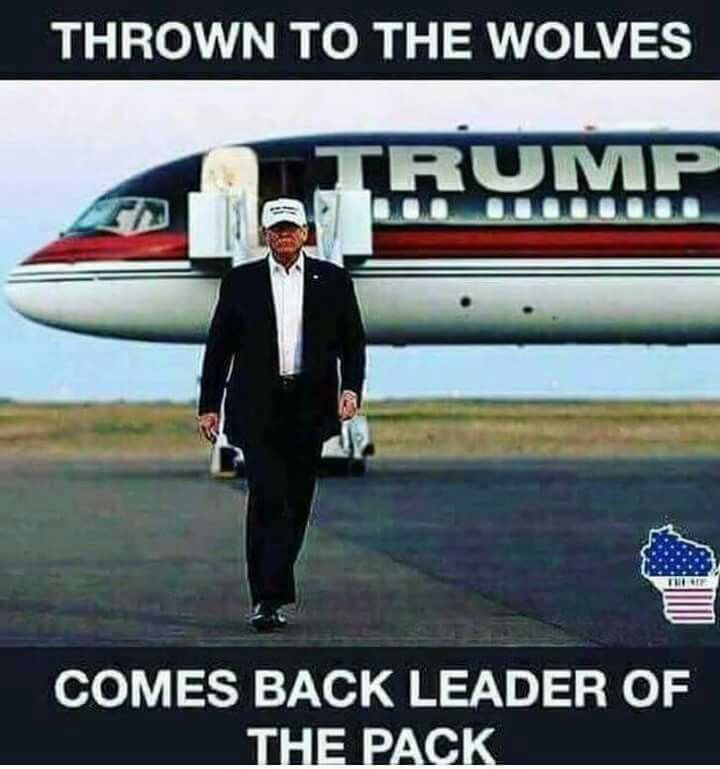 Trump beat the odds! So freaking amazing! Time to finish what you started Trump!