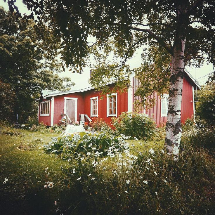 Finnish archipelago is full of islands and every island hiddens tons of these gorgeous red cabins. I love them. Konsta Pulkka (Squirrel whisperer, Outdoor Photographer Based in Helsinki, Finland)  @ourfinland  @visitarchipelago