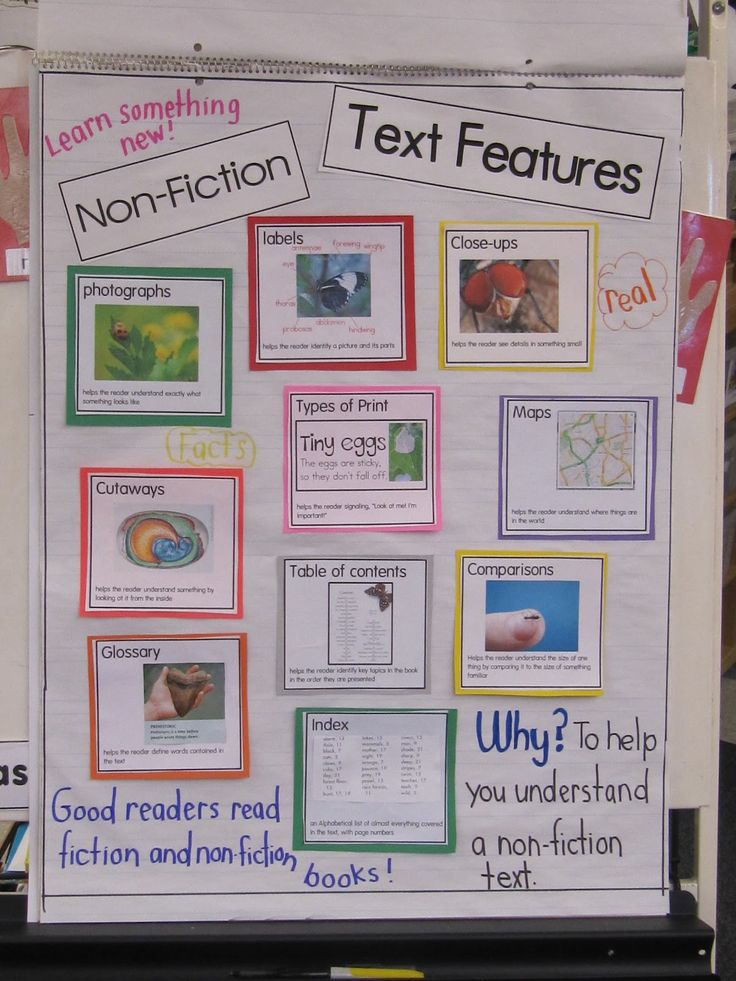 3rd Grade Activities Expository Writing