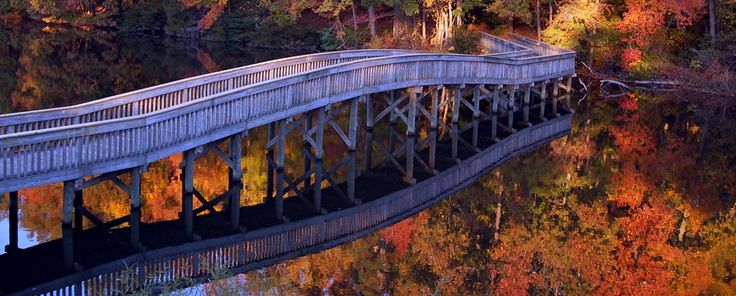 FootBridge over Lake Murray, Newport News, Virginia, USA