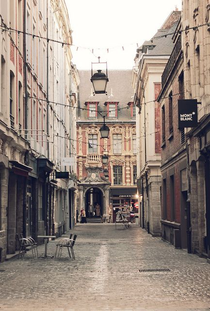 If I get accepted to the study abroad program this is where I'll be :D Lille, France