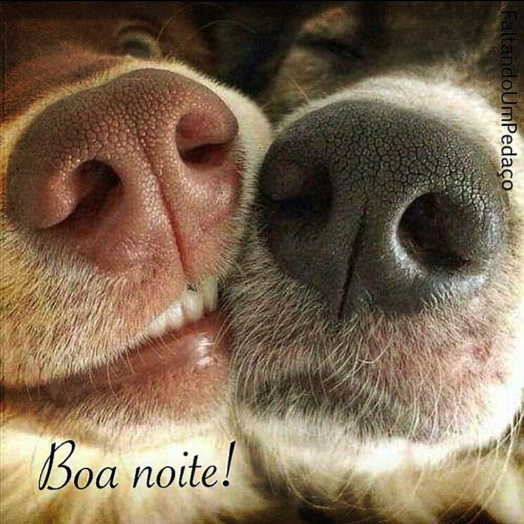 #boanoite #reflexão #frases #pensamentos