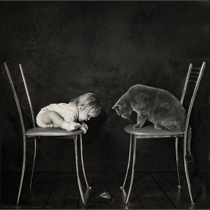 Andy Prokh Cat | Andy Prokh retrata la hermosa relación entre una niña y su gato