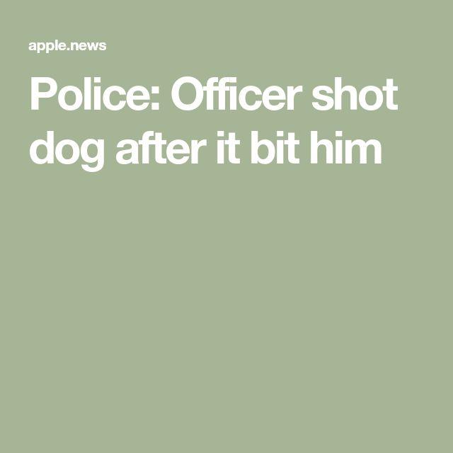 Police: Officer shot dog after it bit him