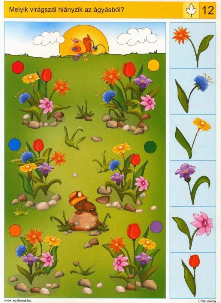 Piccolo: blad kaart 12