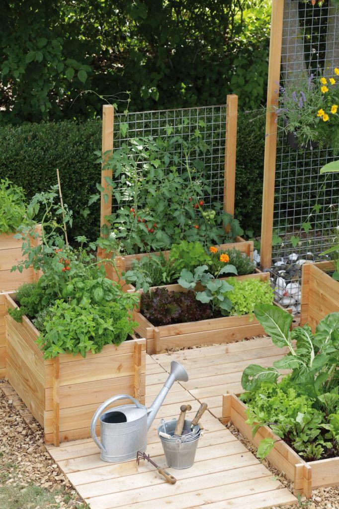 77 best au potager images on pinterest gardening for Jardin malin