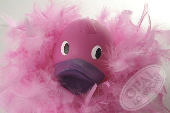 Pink duck with a boa - celebrate life