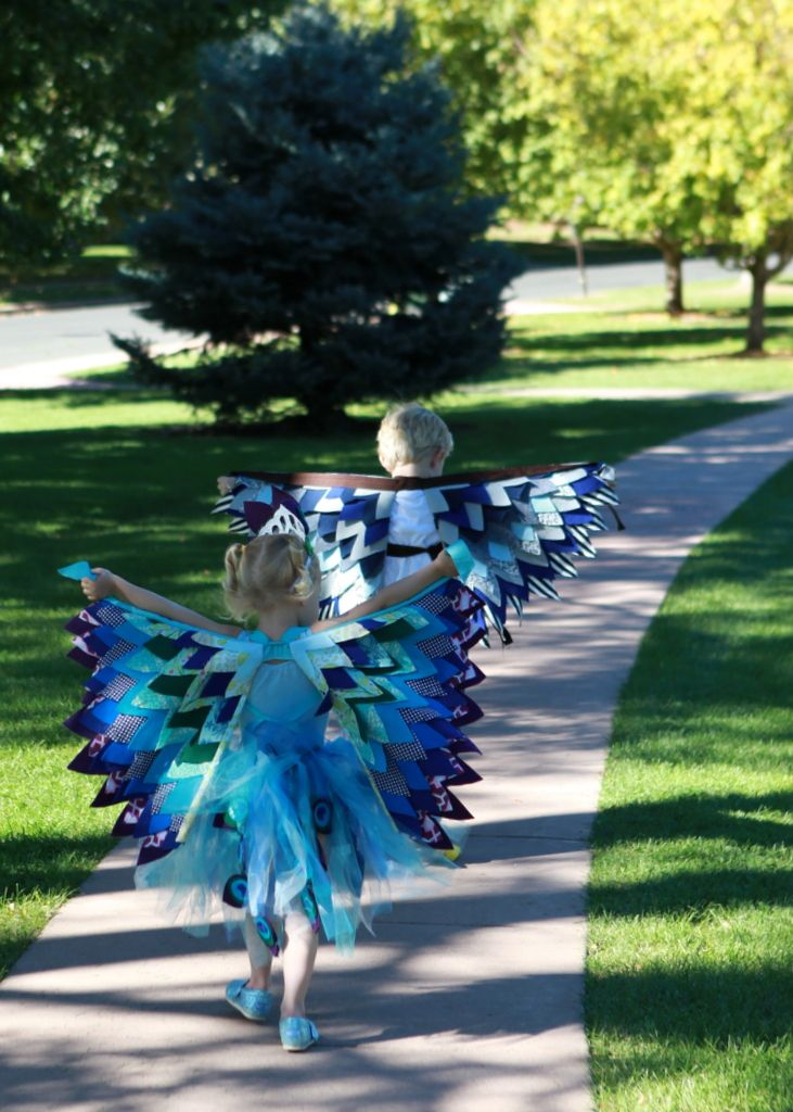 bird themed halloween costumes- an eagle and a peacock