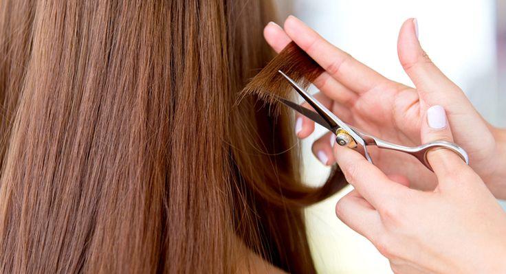 Cursos de peluquería gratis # Si ayer te hablábamos sobre un curso para aprender cómo teñirse el peloy conocer las técnicas de coloración en el cabello, y de la manera de ampliar tu currículo con una especialización dentro de la ... »