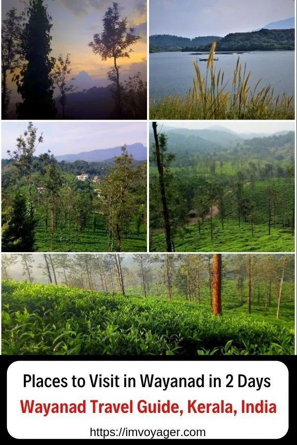Places To Visit In Wayanad In 2 Days Kerala India Wayanad 2 Days Itinerary Wayanad 3 Days Itinerary Wa Cool Places To Visit Places To Visit Asia Travel