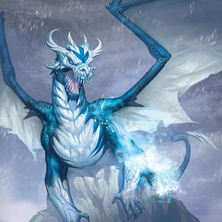 Frost Dragon: 386 Best Snow, Ice, & Frost Dragons Images On Pinterest