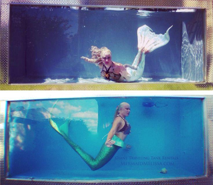 97 best mermaid performers images on pinterest real life for Mermaid fish tank