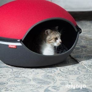 Kitty hide and seek time.  Little Arena-Red. Hard case. FB1308-R -  ibiyaya.com