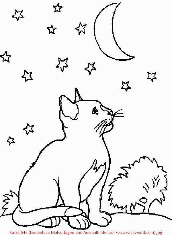 malvorlagen katzen baby in 2020  ausmalbilder malvorlage