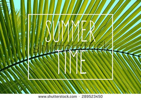 Beach Vectores en stock y Arte vectorial | Shutterstock