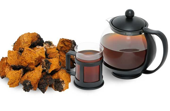 chaga benefits that are not found in any other herb