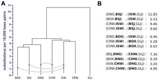 PLOS Genetics: Genome Sequencing Highlights the Dynamic Early History of Dogs