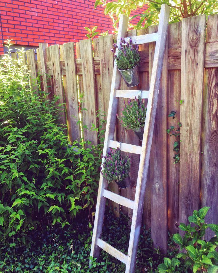 Old Wooden Stairs with hanging flowerpots with lavendre / oude houten trap met hangende zinken bloempotjes met lavendel