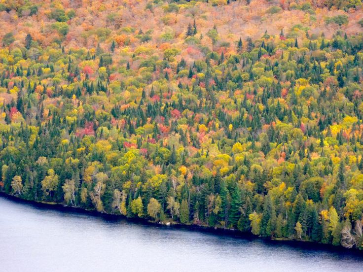 Mont-Tremblant National Park in fall